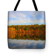 Reflection Of The Fall Tote Bag