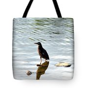 Reflection Of The Green Heron Tote Bag