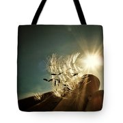 Reflection Of The Sun Tote Bag