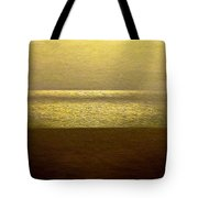 Reflections 95 Tote Bag