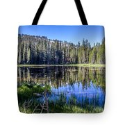 Reflections At Its Best Tote Bag