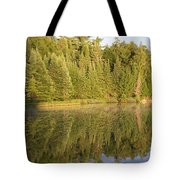 Reflections - Canisbay Lake - Detail Tote Bag
