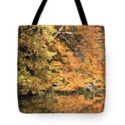 Reflections II Tote Bag
