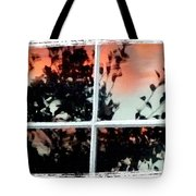Reflections In An Old Window Tote Bag