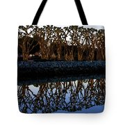 Reflections In First Light Tote Bag