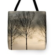 Reflections In Grey II Tote Bag
