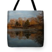 Reflections In My Favorite Pond Tote Bag