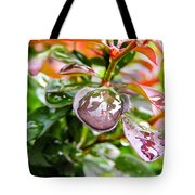 Reflections In Raindrops Tote Bag