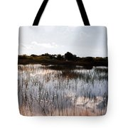 Reflections In The Everglades  Tote Bag