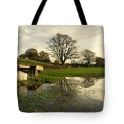 Reflections In The Flood  Tote Bag