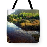 Reflections In The Pond Tote Bag