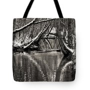 Reflections In The Snow Tote Bag
