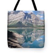 Reflections In Time Tote Bag