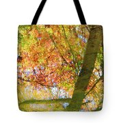Reflections Of A Colorful Fall 001 Tote Bag