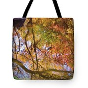 Reflections Of A Colorful Fall 002 Tote Bag