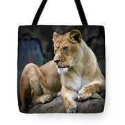 Reflections Of A Lioness Tote Bag