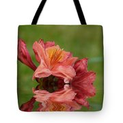 Reflections Of A Rhododendron Tote Bag
