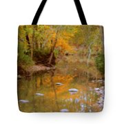 Reflections Of An Autumn Day Tote Bag