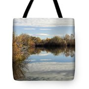 Reflections Of Clouds Tote Bag by Dana Moyer