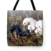 Reflections Of Different Colors - Living In Harmony Tote Bag