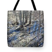 Reflections Of Early Spring 3 Tote Bag
