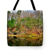 Reflections Of Earth Tote Bag