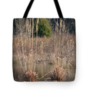 Reflections Of Winter Past 2014 Tote Bag