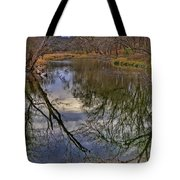 Reflections On A Warm Winter Day Tote Bag