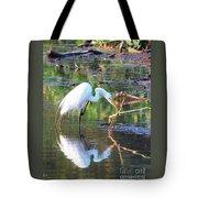Reflections On Wildwood Lake Tote Bag