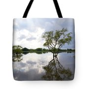 Reflective Flood Waters Tote Bag