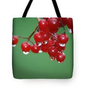 Reflective Red Berries  Tote Bag