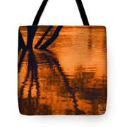 Reflectivity Tote Bag