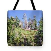 Reforestation Tote Bag