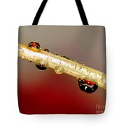 Refractions Of A Red Rose 2 Tote Bag