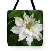 Refreshed By The Rain Tote Bag