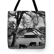 Refreshing Tote Bag by Tom Druin