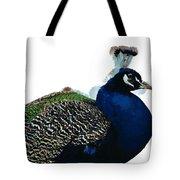 Regal Peacock Tote Bag