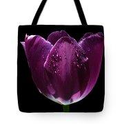 Regal Purple Tote Bag