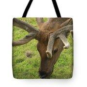 Reindeer Head Tote Bag