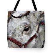Reindeer Portrait Tote Bag