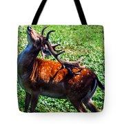 Reindeer Scratch Tote Bag