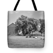Reive Blvd Barn 15059b Tote Bag