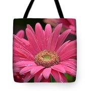 Rejoice It's Spring Tote Bag