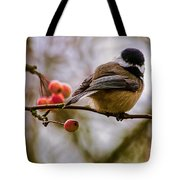 Relationships Are Like Birds Tote Bag