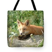 Relaxed Fox Tote Bag