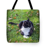 Relaxing In Autumn Tote Bag