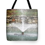 Relaxing In The Park Tote Bag