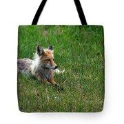 Relaxing Red Fox Tote Bag