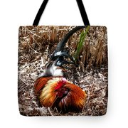 Relaxing Rooster Tote Bag