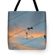 Remains Of Kite On The Electric Power Line Tote Bag